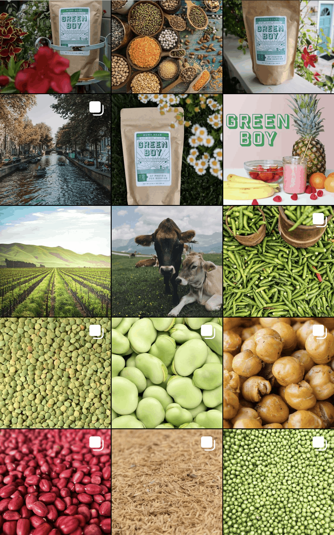 green boy products instagram feed before